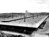 1969年_昭和44年_3月_船橋市中央卸売市場_施設_112