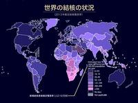 2013年_世界の結核状況_WHO_144