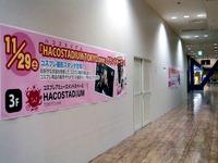 20141115_ビビット南船橋_ハコスタジアム東京_1713_DSC07701