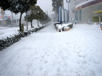 20140208_関東に大雪_千葉県船橋市南船橋地区_1512_DSC04370