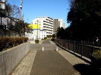 20151229_船橋市夏見3_耳が切られたウサギ_1317_DSC01807