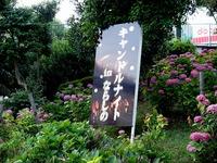 20150620_津田沼公園_キャンドルナイトinならしの_1804_DSC09328