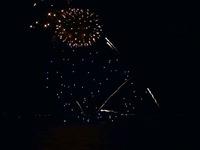 20140802_習志野市茜浜緑地_習志野市民花火大会_2020_04060