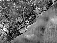 1961年_市川市福栄4_千葉県行徳野鳥観測舎_行徳内陸性湿地_110