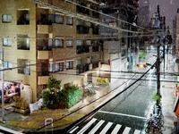 20160118_東京都_強い冬型の低気圧_積雪_大雪_0219_DSC00010T