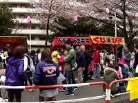 20150404_松戸市六高台の桜通り_六実桜まつり_1234_MAH00305030
