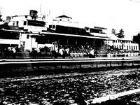 1955年_昭和30年_中山競馬場_1733_DSC04169T