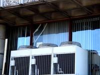 20111231_船橋市西船4_船橋市西図書館_1217_DSC07890