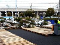 20140105_イケア船橋_モミの木クリスマスツリー_回収_1152_DSC09712