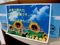 20141109_船橋市_千葉徳洲会病院_さざんか祭り_1209_DSC07216
