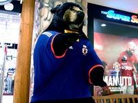 20140520_ワールドカップ_ガンバレサッカー日本代表_1942_DSC01368