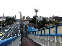 20141129_船橋市若松1_船橋競馬場_十月桜_さくら_1021_DSC00242