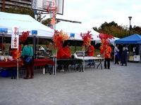 20151031_浦安市高洲中央公園_高州フェスティバル_1456_DSC05418