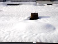 20140210_関東に大雪_千葉県船橋市南船橋地区_0756_DSC04766