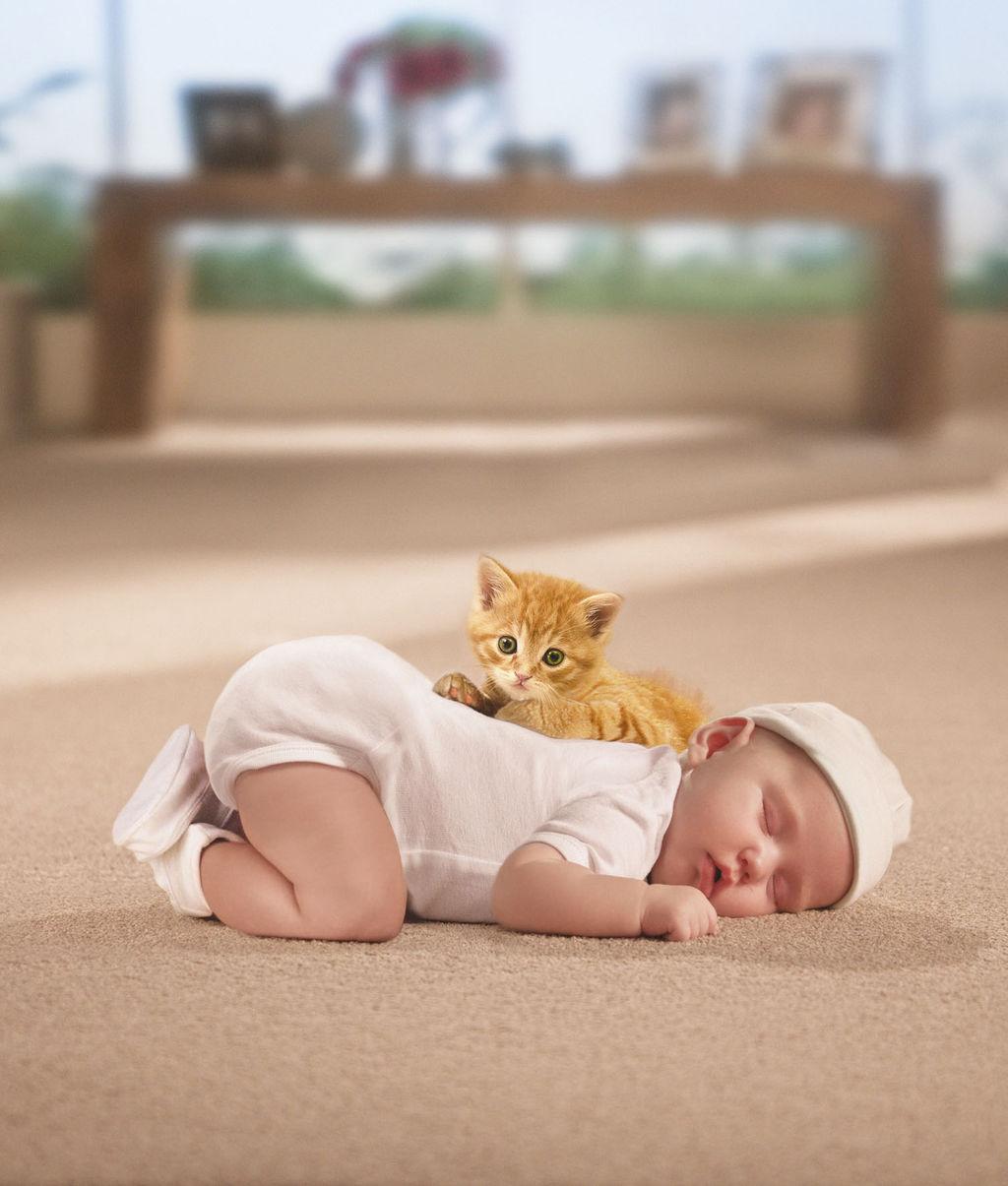 Baby-and-kitten-on-c9C8F06