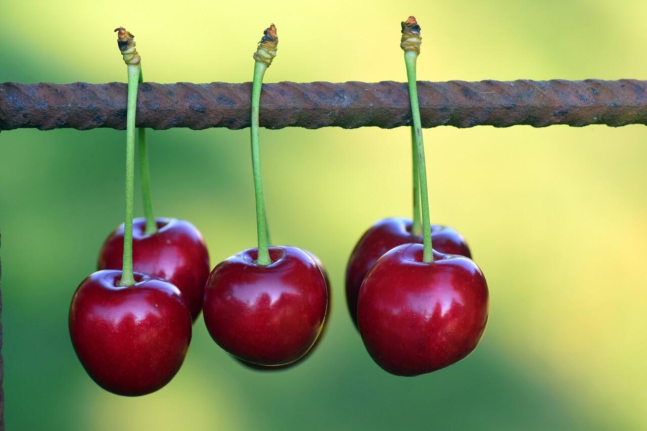 cherries-2426114_1920