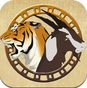 Tiger and Goat - ネパールで人気の戦略ボードゲーム(230円)