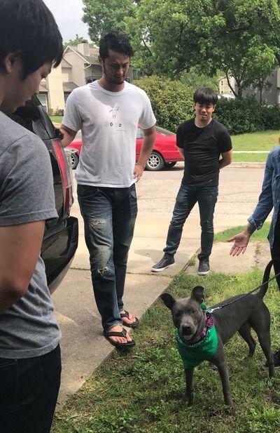 【朗報】ダルビッシュ有さん、捨て犬を引き取り地元民を感動させる