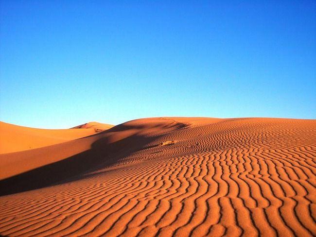 彡(゚)(゚)「ローソン、サハラ砂漠中央店?」