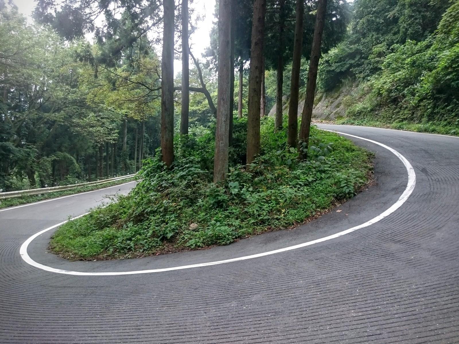 白石峠」~超定番の急坂コースは...