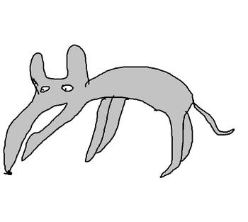 SIN Apr dog