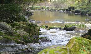 16歳僕「川の水ってどこからきてるんやろ…?」