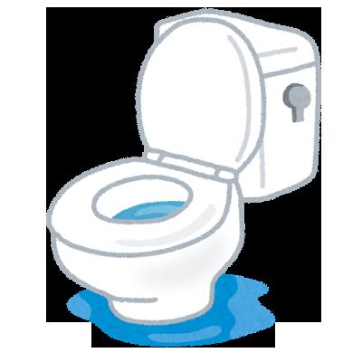 わい38歳無職、家のトイレのタンクを修理してマッマから1万円を頂く