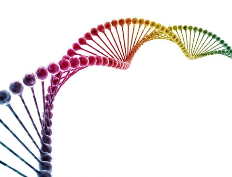 a-colorful-dna-strand