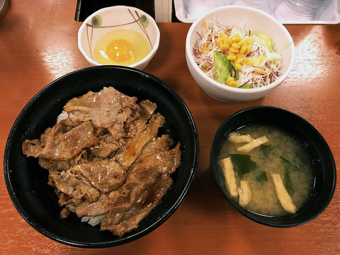 chikarameshi3