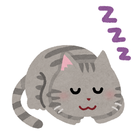 sleep_animal_cat