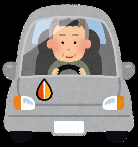car_drive_mark_momiji