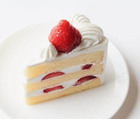 【画像あり】イッヌ「人間のケーキ美味すぎィ!」ムシャムシャ