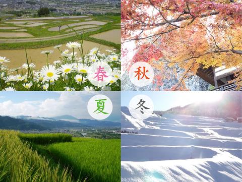 日本人「日本の四季は最高だぜw」春「花粉症ズドーン!!!!!」夏「蒸し暑さズドーン!!!」