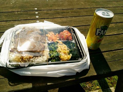 【画像あり】ワイニート、公園でのどかにお昼ご飯wwwwwww