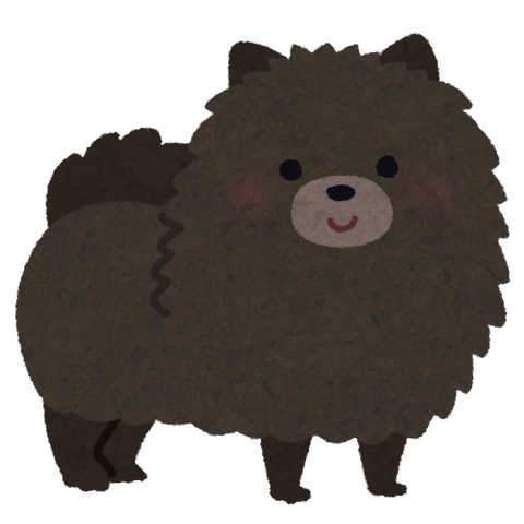 dog_pomeranian_black