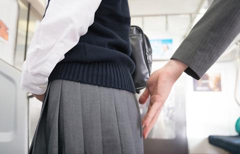 【悲報】地下鉄の電車内で女子高生の尻を触った男の職業wwwwwwwww