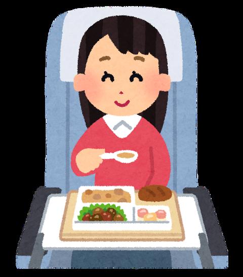 【悲報】飛行機の機内食が出るも不味そうwwwwwwwwwwwww