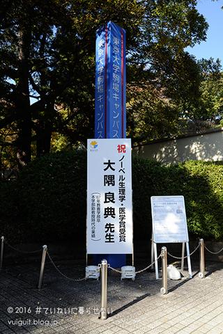 20161126_05_DSC0319