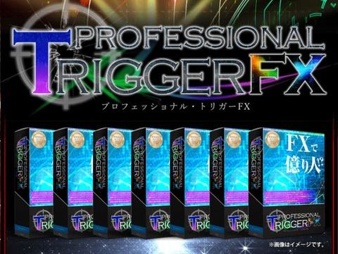 プロフェッショナル・トリガーFX  - プロトリFX -cro