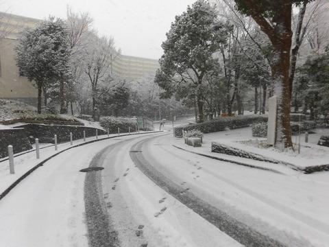 H30年初雪 (3)