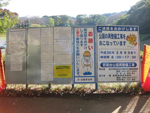 わかば公園整備 (4)