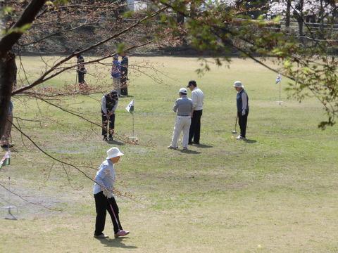くぬぎ会長杯グランドゴルフ (4)