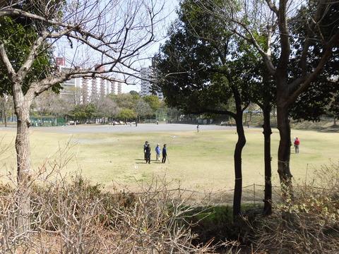 くぬぎ会長杯グランドゴルフ (6)