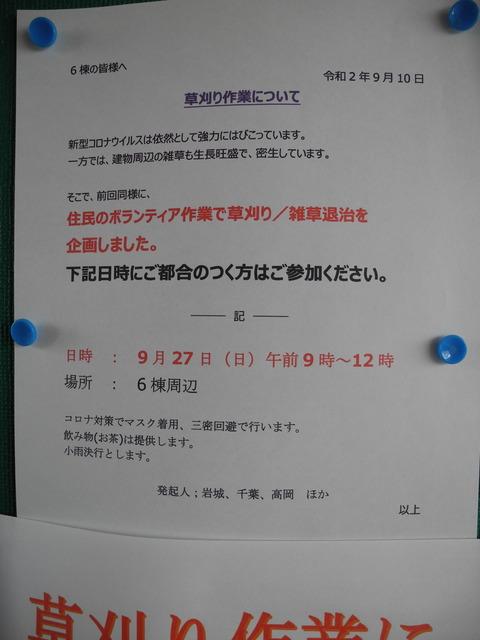 DSCN6404 - コピー