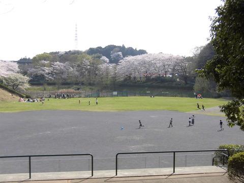 若葉台公園再整備3-29 (2)