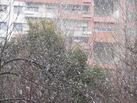 H30年初雪