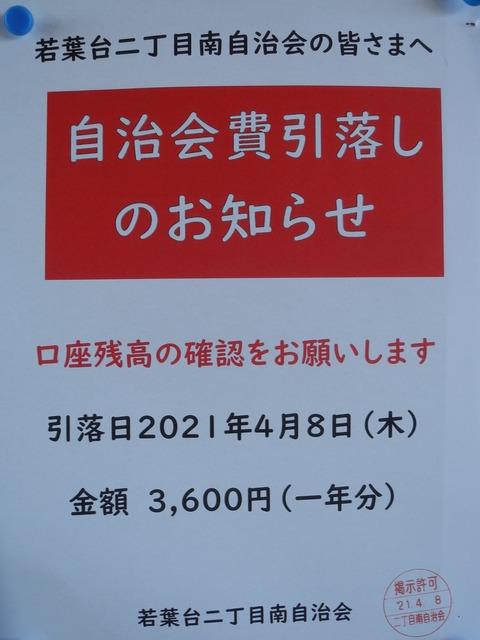 DSCN7716