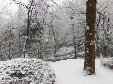 H30年初雪 (6)