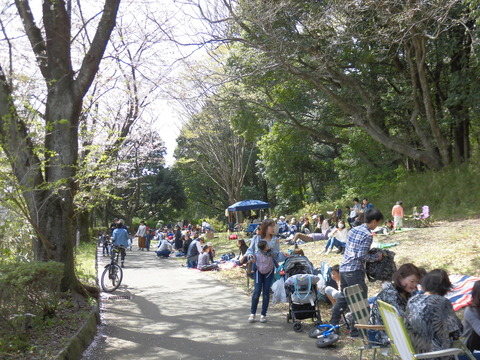桜まつり、見物客