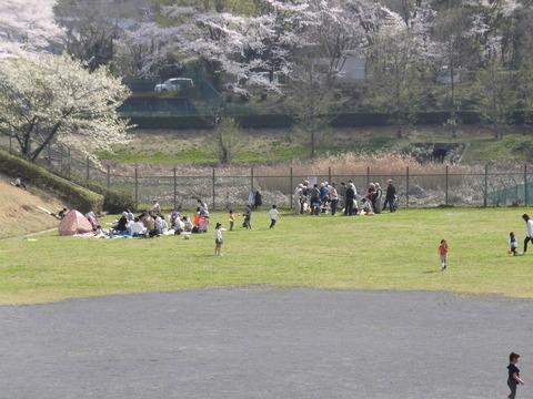 若葉台公園再整備3-29 (3)